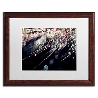 Trademark Fine Art BC0129-W1620MF