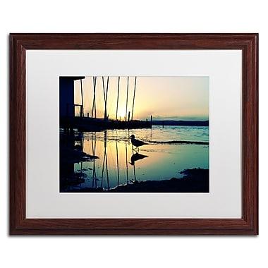 Trademark Fine Art BC0130-W1620MF
