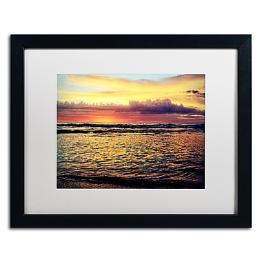 Trademark Fine Art BC0131-B1620MF