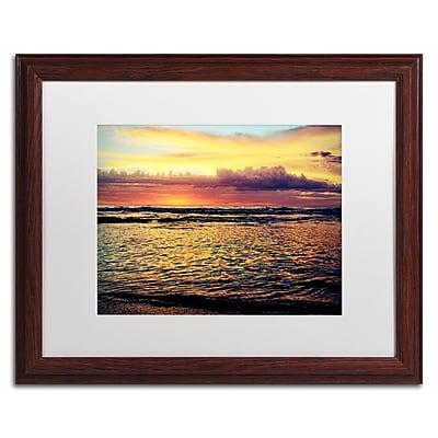 Trademark Fine Art BC0131-W1620MF