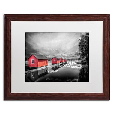 Trademark Fine Art EB0053-W1620MF