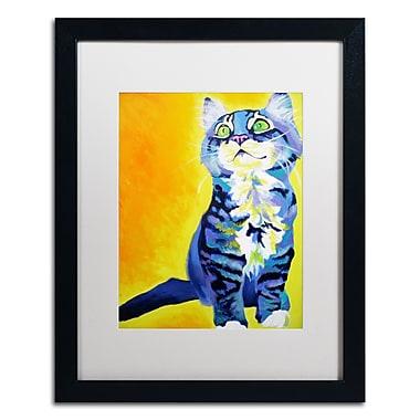 Trademark Fine Art ALI0567-B1620MF