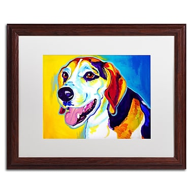 Trademark Fine Art ALI0571-W1620MF