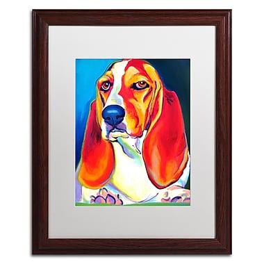 Trademark Fine Art ALI0575-W1620MF