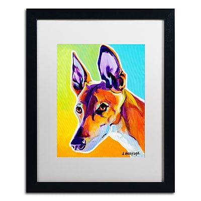 Trademark Fine Art ALI0580-B1620MF