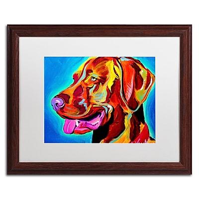 Trademark Fine Art ALI0590-W1620MF