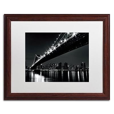 Trademark Fine Art WAP0113-W1620MF