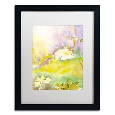 Trademark Fine Art SG5701-B1620MF