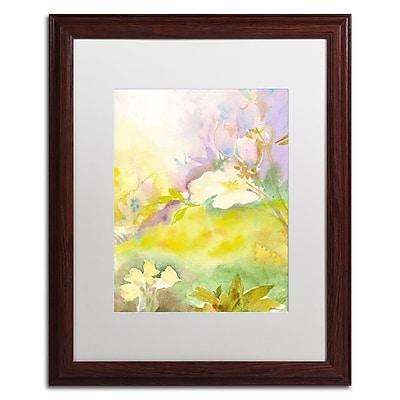 Trademark Fine Art SG5701-W1620MF