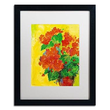 Trademark Fine Art SG5706-B1620MF