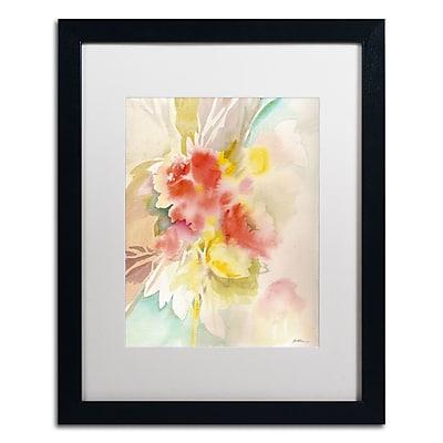 Trademark Fine Art SG5698-B1620MF