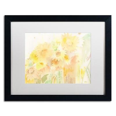 Trademark Fine Art SG5713-B1620MF