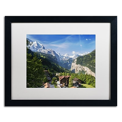 Trademark Fine Art PSL0295-B1620MF