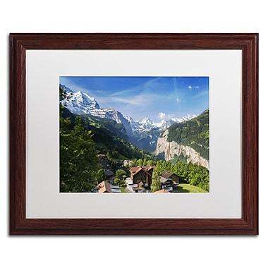 Trademark Fine Art PSL0295-W1620MF