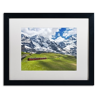 Trademark Fine Art PSL0297-B1620MF