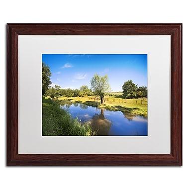 Trademark Fine Art PSL0331-W1620MF