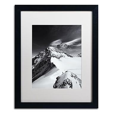 Trademark Fine Art PSL0303-B1620MF