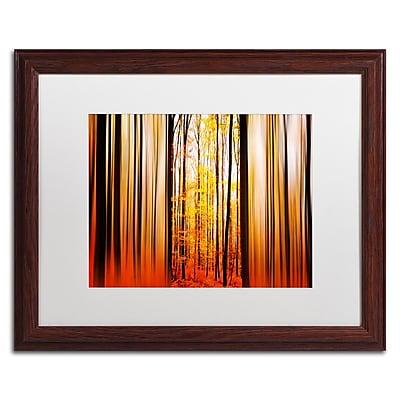 Trademark Fine Art PSL0305-W1620MF
