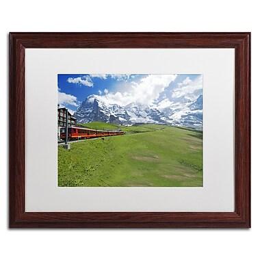 Trademark Fine Art PSL0307-W1620MF