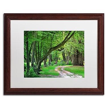 Trademark Fine Art PSL0309-W1620MF