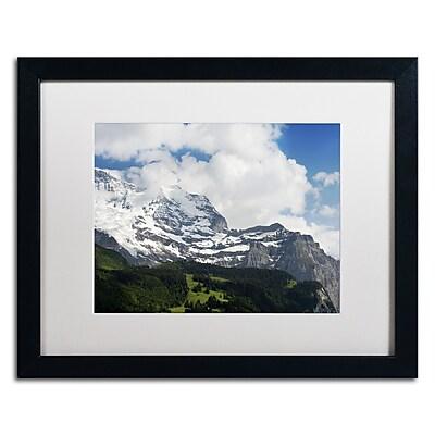 Trademark Fine Art PSL0317-B1620MF