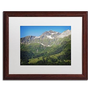 Trademark Fine Art PSL0318-W1620MF