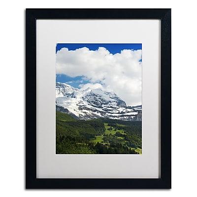Trademark Fine Art PSL0321-B1620MF