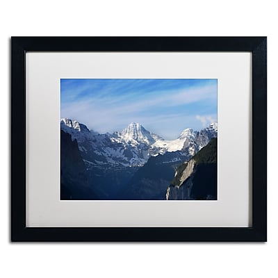 Trademark Fine Art PSL0323-B1620MF