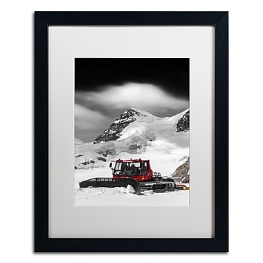 Trademark Fine Art PSL0326-B1620MF