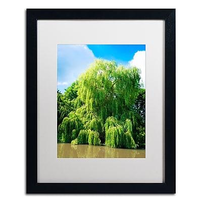 Trademark Fine Art PSL0329-B1620MF