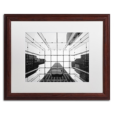 Trademark Fine Art NP0010-W1620MF