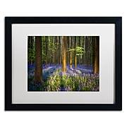 """Trademark Fine Art RV0021-B1620MF """"Mystical Forest"""" by Mathieu Rivrin 16"""" x 20"""" Framed Art, WHT MTD"""
