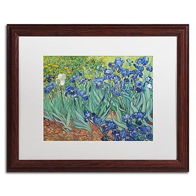 Trademark Fine Art BL0317-W1620MF