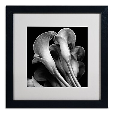 Trademark Fine Art ALI0288-B1616MF