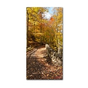 "Trademark Fine Art KS0134-C1632GG ""Beautiful Autumn Hike"" by Kurt Shaffer 16"" x 32"" Frameless Art"