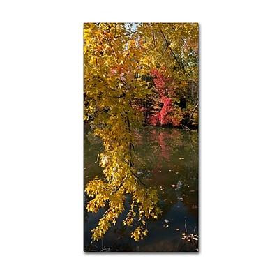 Trademark Fine Art KS0136-C1019GG