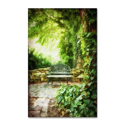 Trademark Fine Art LBR0236-C3047GG