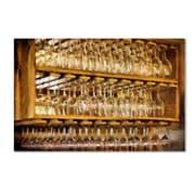 "Trademark Fine Art LBR0257-C1624GG ""Drinks on the House in Warmest Gold"" by Lois Bryan 16"" x 24"" Frameless Art"
