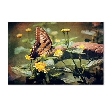 Trademark Fine Art LBR0263-C3047GG