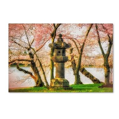 Trademark Fine Art LBR0268-C3047GG
