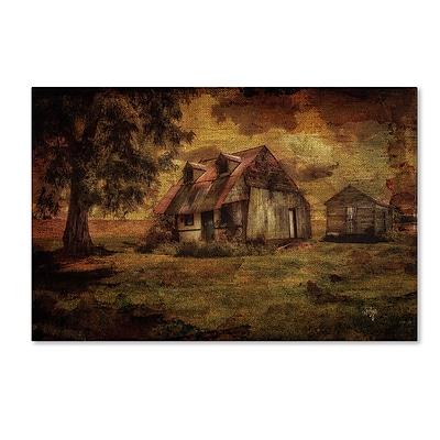 Trademark Fine Art LBR0269-C3047GG