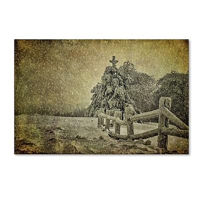 Trademark Fine Art LBR0273-C1219GG