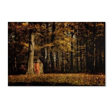 Trademark Fine Art LBR0287-C2232GG