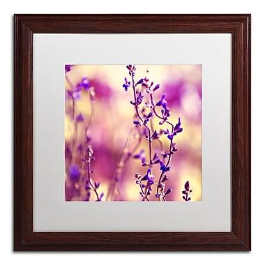 Trademark Fine Art BC0145-W1616MF
