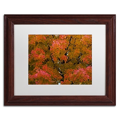 Trademark Fine Art KS0137-W1114MF