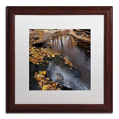 Trademark Fine Art KS0141-W1616MF