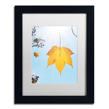 Trademark Fine Art KS0146-B1114MF