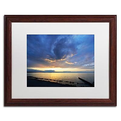 Trademark Fine Art KS0149-W1620MF