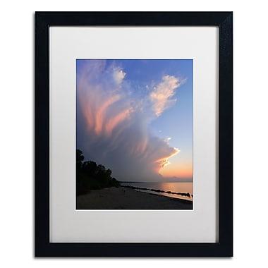 Trademark Fine Art KS0150-B1620MF