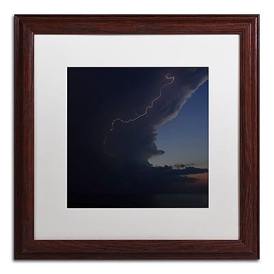 Trademark Fine Art KS0151-W1616MF